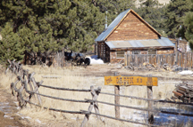 Come stay in Guffey Colorado! Click to see Cabins!